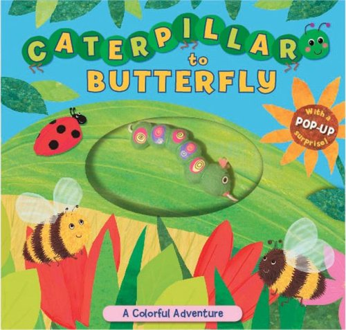 9781416947530: Caterpillar to Butterfly: A Colorful Adventure