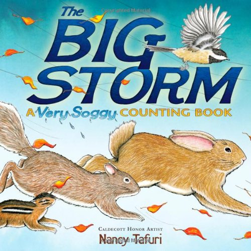 The Big Storm: A Very Soggy Counting Book: Tafuri, Nancy