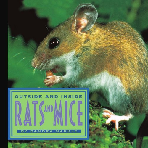 Outside and Inside Rats and Mice (Outside Inside): Markle, Sandra