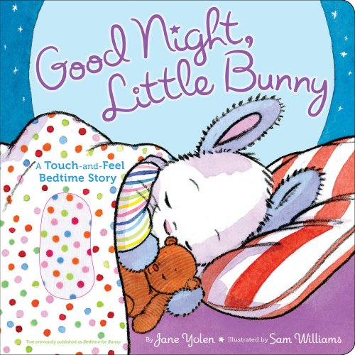 9781416983019: Good Night, Little Bunny: A Touch-and-Feel Bedtime Story