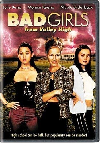 9781417046614: Bad Girls From Valley High