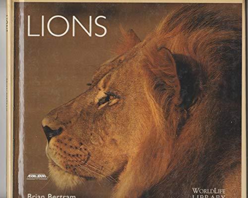 9781417658121: Lions