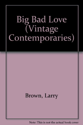 9781417718535: Big Bad Love (Vintage Contemporaries)
