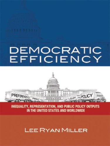9781418401634: Democratic Efficiency: Inequality, Representation, and Public Policy Outputs in the United States and Worldwide
