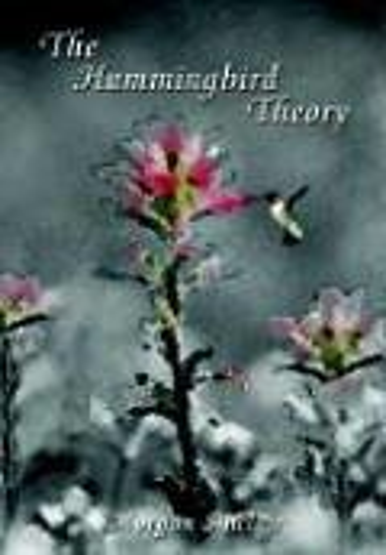 The Hummingbird Theory: Morgan Sinclair