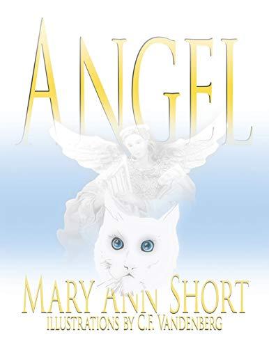 9781418484286: Angel