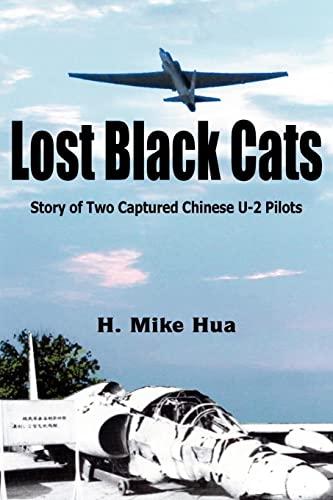 9781418499174: Lost Black Cats
