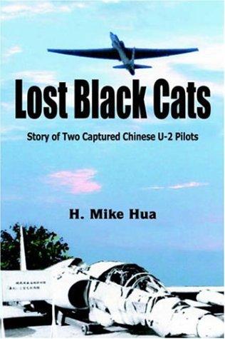 9781418499181: Lost Black Cats