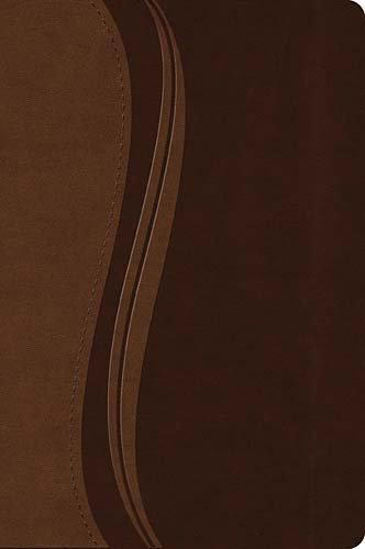 9781418543228: NKJV Study Bible/Large Print-Brown LeatherSoft