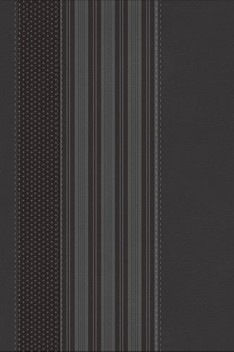 9781418543334: NKJV, The Maxwell Leadership Bible, Leathersoft, Gray