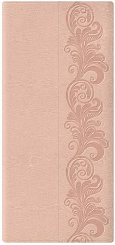 9781418544713: Holy Bible: King James Version, Fleshtone Beige, Leathersoft, Checkbook (Classic Series)