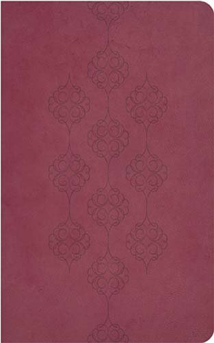 9781418548261: Holy Bible: New King James Version, Cranberry Leathersoft, Giant Print Center-Column Reference Edition