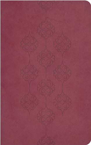9781418548278: Holy Bible: New King James Version, Cranberry Leathersoft, Giant Print Reference Editioni (Classic)
