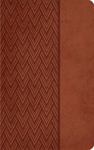 9781418548308: Holy Bible: New King James Version; Auburn Leathersoft, Giant Print, Reference Bible
