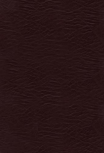 9781418548650: NKJV Jesus Calling Devotional Bible: Enjoying Peace in His Presence, Burgundy, Bonded Leather