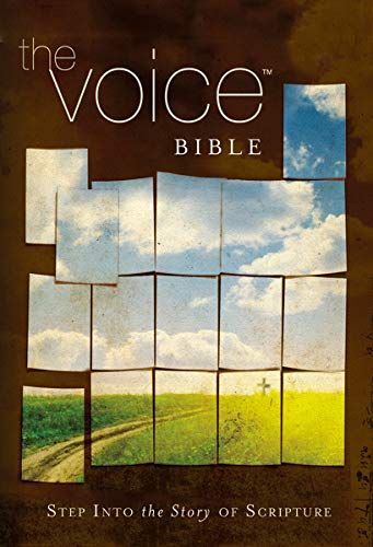 9781418549015: The Voice Bible: Step into the Story of Scripture