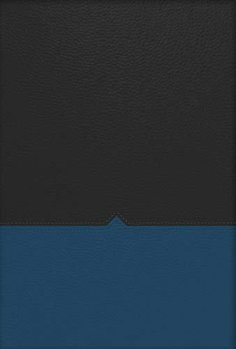 9781418549107: NKJV, The Charles F. Stanley Life Principles Bible, Leathersoft, Blue/Black, Indexed