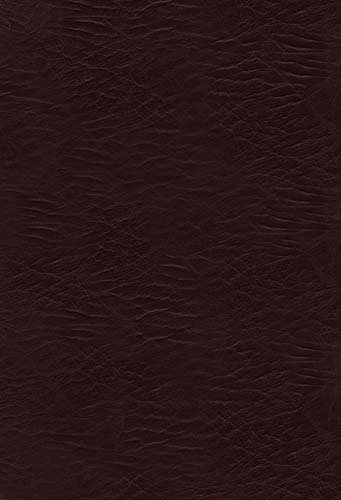 The Woman's Study Bible: King James Version, Burgundy Bonded Leather (Signature) (9781418550455) by Thomas Nelson Publishers