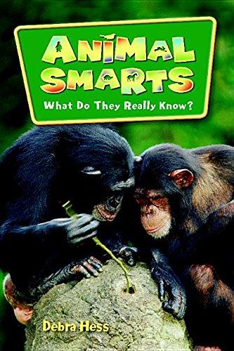 Steck-Vaughn LYNX: Science Readers Grade 5 Animal: STECK-VAUGHN