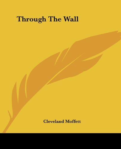 9781419190063: Through The Wall