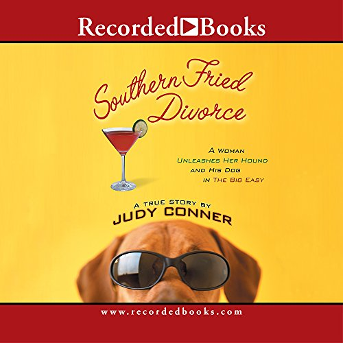9781419327575: Souther Fried Divorce