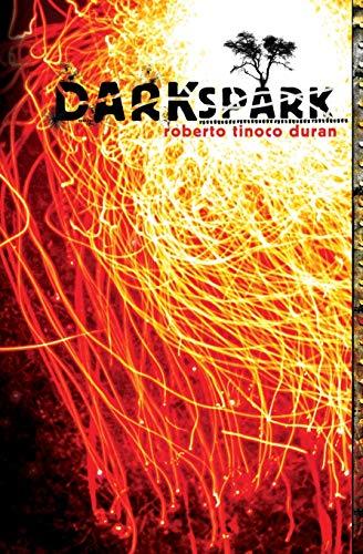 9781419641114: Dark Spark