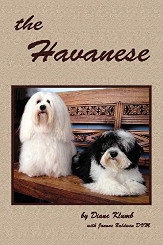 the Havanese: Diane Klumb