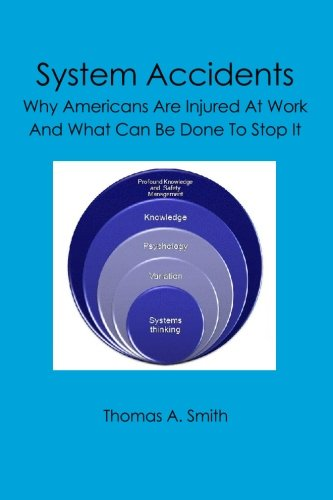 9781419673061: System Accidents: Why Americans Are Injured At Work And What Can Be Done To Stop It