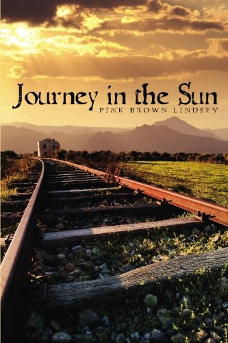 9781419698019: Journey In The Sun
