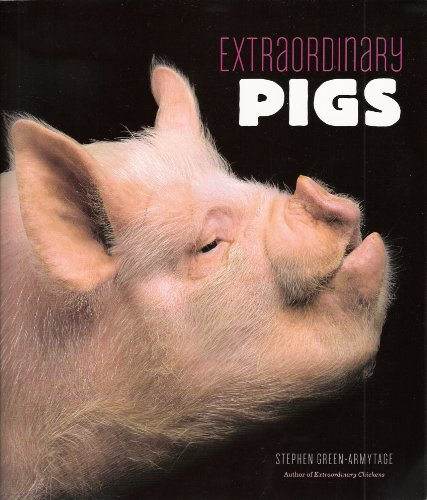 9781419700057: Extraordinary Pigs
