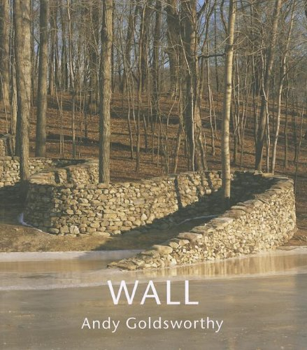 Wall at Storm King (Paperback)