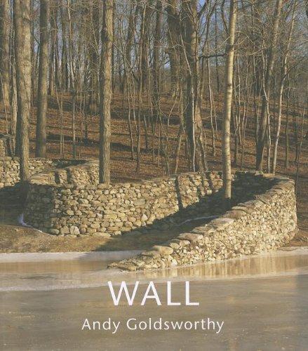 9781419700965: Wall: At Storm King