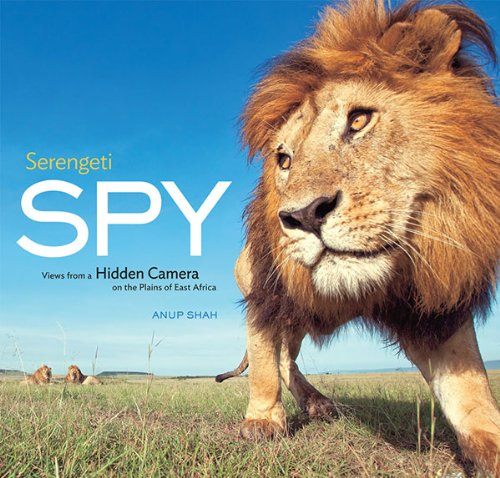 Serengeti Spy: Views from a Hidden Camera on the Plains of East Africa: Anup Shah