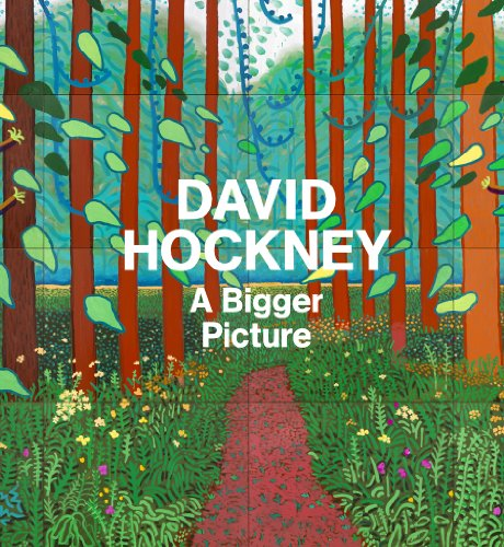 9781419702808: David Hockney: A Bigger Picture