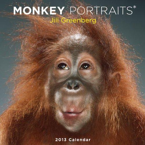 9781419703461: Monkey Portraits 2013 Wall Calendar