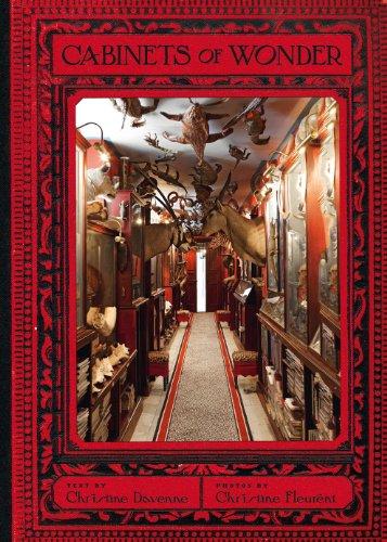 9781419705540: Cabinets of Wonder