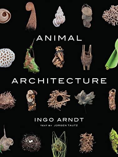 9781419711657: Animal Architecture