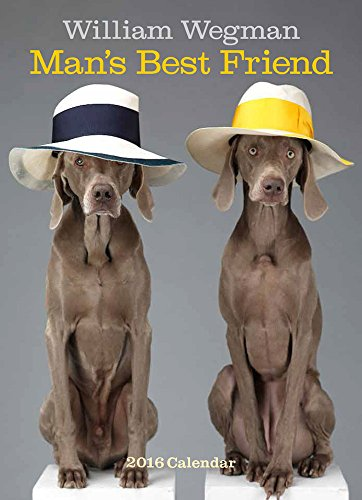 9781419716096: William Wegman Man's Best Friend 2016 Wall Calendar