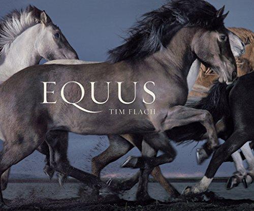 9781419716683: Equus (Mini)