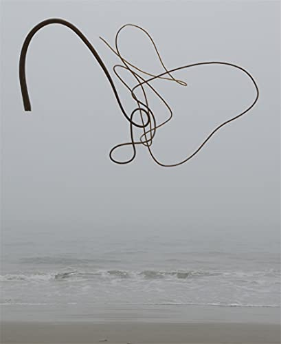 9781419717796: Andy Goldsworthy: Ephemeral Works: 2004-2014