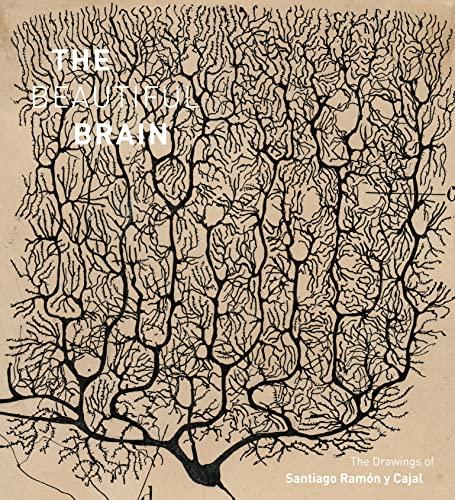 9781419722271: The Beautiful Brain: The Drawings of Santiago Ramon y Cajal