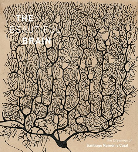 9781419722271: Beautiful Brain: The Drawings of Santiago Ramon y Cajal