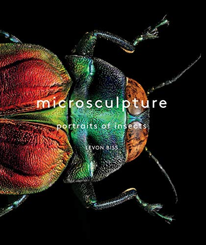 Microsculpture : Portraits of Insects: Levon Biss