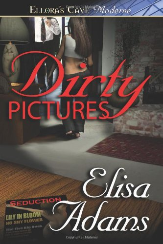 9781419951855: Dirty Pictures