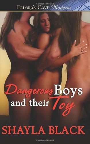 9781419958502: Dangerous Boys and Their Toy