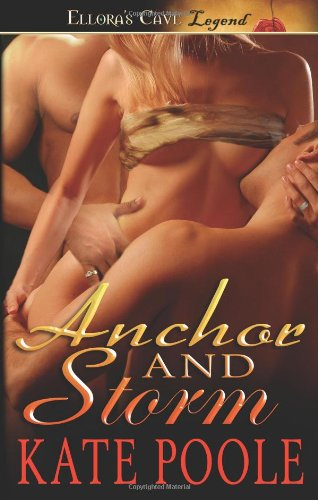 9781419958830: Anchor and Storm