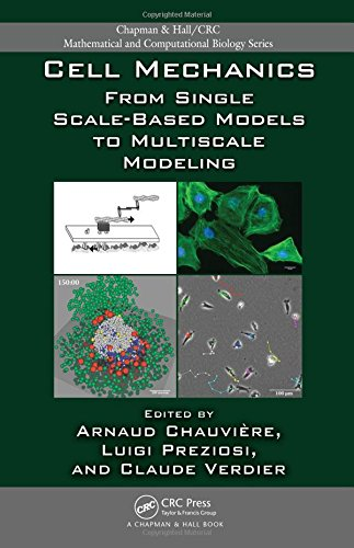 Cell Mechanics: From Single Scale-Based Models To Multiscale Modeling: Chauviere Arnaud; Preziosi ...