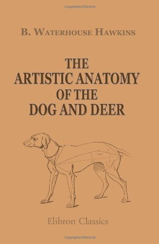 9781421235189: The Artistic Anatomy of the Dog and Deer: With Illustrations Drawn on Wood by the Author