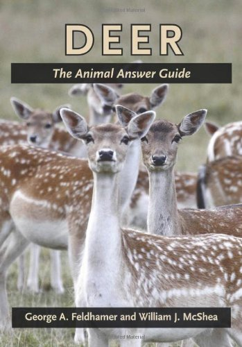 9781421403878: Deer: The Animal Answer Guide (The Animal Answer Guides: Q&A for the Curious Naturalist)