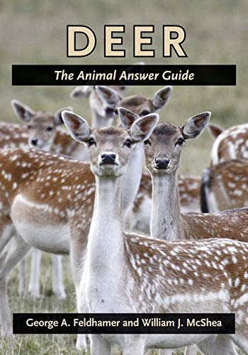 9781421403885: Deer: The Animal Answer Guide (The Animal Answer Guides: Q&A for the Curious Naturalist)